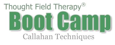 TFTBootCamp-CallahanTechniques.png